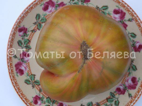 Семена томатов от частных коллекционеров Томат Конфеты Вирджинии